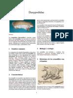 Dasypodidae MAGICO