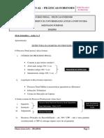 189262262-Mestrado-Forense-Processo-Penal-Teoricas.pdf
