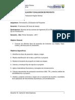 Pauta Presentación y Evaluación Proyecto