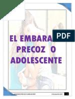 Monografia Del Embarazo Precoz