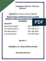 Reporte de Problema Ambiental Seminario Quimica Ambiental (1)