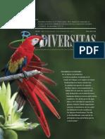 Desarrollo sostenible en la Selva Lacandona