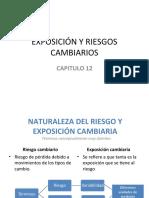EXPOSICIÓN Y RIESGOS CAMBIARIOS