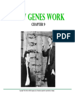 HOW GENES WORK.pdf