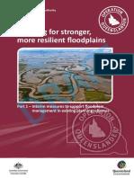 Planning for stronger, more resilient floodplains
