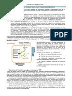 8. Parte 8 - Mitocondrias - Peroxisomas