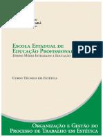 4- Estetica Organizacao e Gestao Do Processo de Trabalho Em Estetica