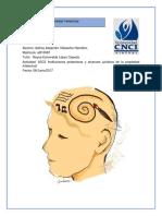 A3C3 Instituciones Protectoras y Alcances Jurídicos de La Propiedad Intelectual