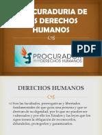 Procesal Penal PDH