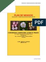 114643123-02-Correccion-de-Plan-de-Negocio-Papa-Nativa-Agroideas-2012-2.doc