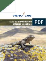 Guia Identificacion Anfibios-yreptiles