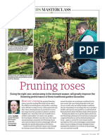 RHS-Masterclass-on-rose-pruning.pdf