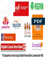 The Ten Small Finance Banks in India