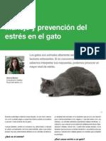 AV_27_Manejo y prevención del estrés en el gato