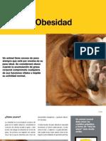 AV_27_Obesidad