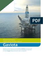 CAPITULO 5A. ALMACENAMIENTO SUBTERRÁNEO GAVIOTA. ENAGAS_.pdf