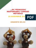 Cerc Pedagogic Responabili Comisiei Metodice