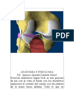 ANATOMIA Y FISIOLOGIA (1).doc