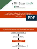 Politicas publicas sobre servicios Ecosistemicos