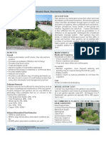 Rain Garden - Charles River Watershed Association