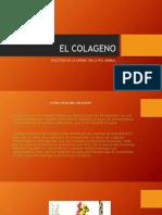 El Colageno