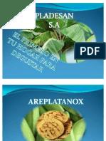 Presentacion Nutritivo y Saludable