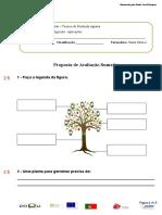 Teste de avaliação Botanica (1).doc