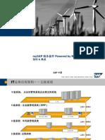SAP技术架构及ERP实现方法简介