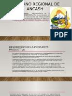 Exposicion Region Pn Trucha