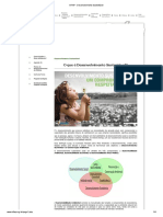InFAP - Desenvolvimento Sustentável