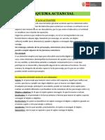 ESQUEMA ACTANCIAL.docx