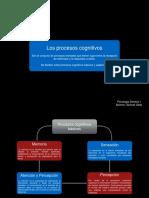 Procesos cognitivos basicos y superiores