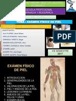 Examn de Piel y Mucosas Verd