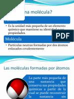 2. Composición Química de Las Celulas