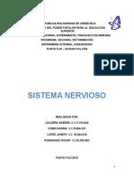 Trabajo Del Sistema Nervioso