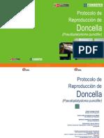 Manual Doncella
