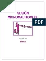 Sesion Micromachismos i