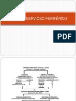 A -Sistema Nervioso Periférico