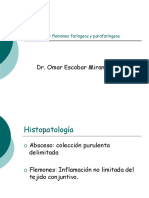 c Abscesos y Flemones Faringeos y Parafaringeos