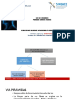 Praxias Correlato Neuroanatomico Patologias