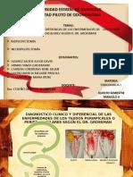 Endodoncia - Grupo 5