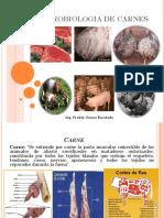 Clase 7 Microbiologia de Carnes