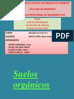 expos-suelos II.pptx