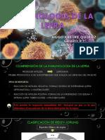Inmunología de La Lepra
