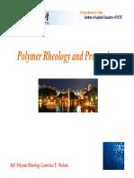 Polymer rheology and processing(-´è‹±--