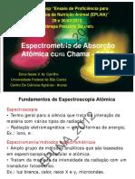 Curso FAAS_Elma NVM Carrilho_UFSCar