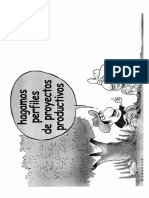 formulacion de proyectos productivos.pdf