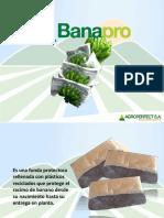 Banapro