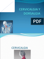cervicalgiaydorsalgia-130120052334-phpapp01