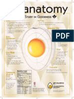 Egganatomy Poster En